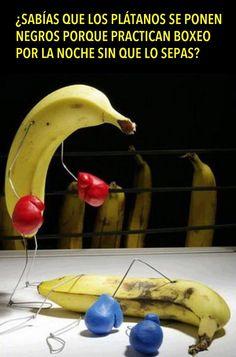 Por qué se ponen los bananos negros.