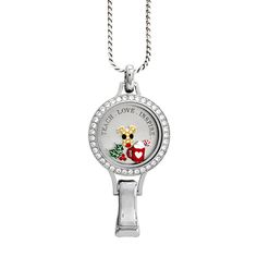 Origami Owl Winter C