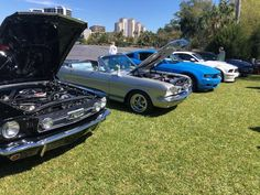 Must see attraction in Fort Myers FL, Edison Ford Winter Estates feature museum, botanical garden, laboratory, and homes of Thomas Edison & Henry Ford. Mustang Engine, Mustang Cars, Henry Ford, Fort Myers, Historical Sites, Car Show, Vintage Travel, Muscle Cars, Attraction