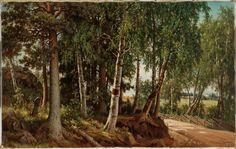 Ferdinand von Wright: Forest Landscape from Haminalahti, Finnish National Gallery / Ateneum Art Museum. Forest Landscape, Ferdinand, Old Art, Finland, Art Museum, Country Roads, Gallery, Plants, Wikimedia Commons