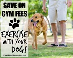 Save on Gym Fees. Ex