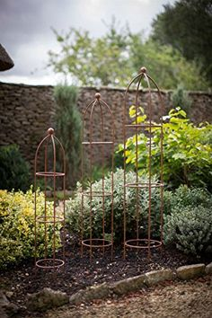 Our Barrington Set of 3 Small Obelisks are the perfect garden accessory providing much needed support for sweet peas and climbing roses as well as a touch of cottage garden style to your borders. Crafted from aged cast iron, they make a highly attractive Obelisk Trellis, Garden Trellis, Garden Plants, Small Garden Obelisk, Small City Garden, Love Garden, Clematis, Garden Cottage, Garden Borders