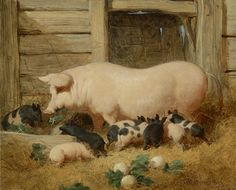 A Sow and Her Litter by John Frederick Herring | Art Posters
