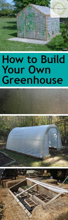How to Build Your Own Greenhouse - Bless My Weeds