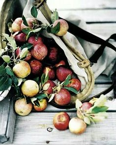apples | food styling | food photography | photo styling | prop styling
