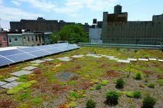 Future Green : Portfolio : ASSOC FOR ENERGY AFFORDABILITY