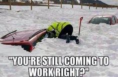 """Humor & Whimsy - Humor & Whimsy Funny pics to make you smile during Snowmageddon.: The Best Of """"Juno"""" Blizzard Memes Work Memes, Work Quotes, Work Humor, Office Humor, Gym Humor, Funny Quotes, Funny Memes, Hilarious, Coaches Be Like"""