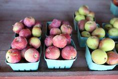 Prince Edward County: Farmers Markets, Honig & lokale Erzeugnisse  Äpfel in allen Farben bei Hagerman Farms