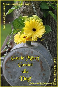 Good Morning Greetings, Good Morning Wishes, Good Morning Quotes, Lekker Dag, G Morning, Goeie Nag, Goeie More, Afrikaans Quotes, Morning Blessings