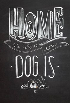 Home is where your dog is. Dog lover | Love Dogs