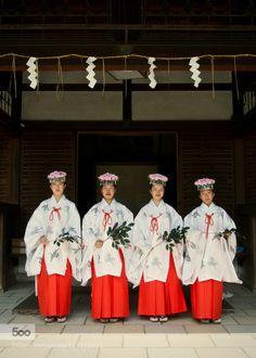 "fulviomeloni:  ""Fujinomori Shrine Maidens by nonbirira http://ift.tt/1LMuR9u #travel #nature #500px  """