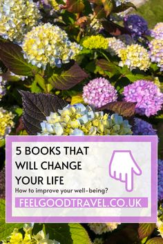 I have realised that I need to create a new daily routine which I will stick to and make sure I am focusing on my mental health as much as keeping physically fit. In this article, I will share 5 books that will give your new daily routine structure, productivity and balance. Those 5 books will teach you how to create new, powerful habits, let go of unpleasant situations, enjoy the moment and most importantly be happy with yourself every day.
