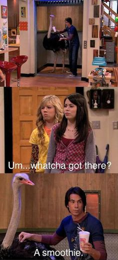48 Best <b>iCarly</b> images | Funny images, <b>Jokes</b>, Childhood