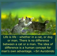 Quote by Sri Aurobindo
