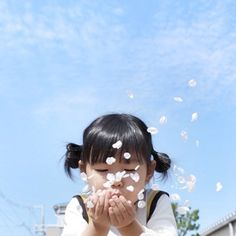 Japanese photography 일본/하늘/여자/아이/꼬마/어린이/벚꽃/꽃잎