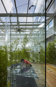 The outdoors come indoors at Crown Sky Garden at Lurie Children's Hospital in Chicago. Photo by Hedrich Blessing.