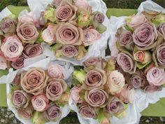 Dusky pink wedding flowers for the bride and her bridesmaids by The Flowersmiths