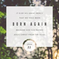 """""""Blessed be the God and Father of our Lord Jesus Christ, which according to his abundant mercy hath begotten us again unto a lively hope by the resurrection of Jesus Christ from the dead,"""" 1 Peter 1:3 KJV http://bible.com/1/1pe.1.3.kjv"""