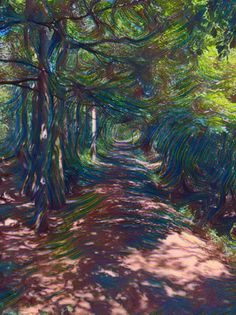 Path into the woods (again) Pinterest Co, Robert Walker, Music Channel, All Songs, Paths, Woods, About Me Blog, Artsy, Art