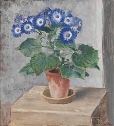 Blue Cineraria, 1928 by Augustus John on Curiator, the world's biggest collaborative art collection. Framed Canvas Prints, Art Prints, Aberdeen Art Gallery, Tate Gallery, Collaborative Art, Art Uk, Vintage Artwork, Planting Flowers, Potted Flowers