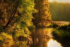 Photo Warm Autumn Light by Carlos Rojas on 500px