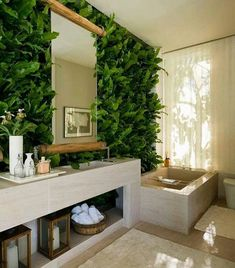 Green plant wall bathroom
