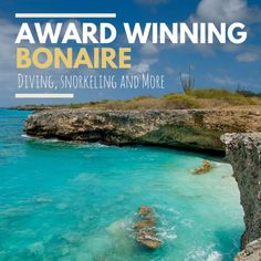 Bonaire continues its recognition as one of the tropical diving capitals of the world.