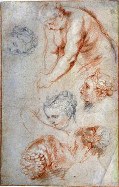 Studies of Women - 1628 - Peter Paul Rubens (Flemish, 1577 - Fine Art Drawing, Body Drawing, Life Drawing, Figure Drawing, Painting & Drawing, Art Drawings, Peter Paul Rubens, Trois Crayons, Michael Angelo