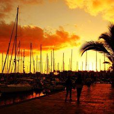 #sunset in #puertodemogan ❤ #igerssweden #statigram #bestagram  #instamood #instagood #instaaddict #instagramhub #instasweet  #gmy #kimija #igersoftheday #photooftheday #clubsocial  #contestday #primeshots #ipopyou #igerspescara #webstagram #landscape_lovers #photowall #igersstockholm #mysthlm #fotografiaunited #skyporn #sunset_madness_reflec #sunset_madness #skypainters #skyporn - @ujos- #webstagram