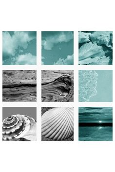ART:ADDICTION  Coastal I Wall Art - Set of 9  $379 Hautelook.com