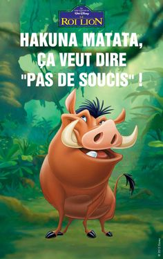 Many more Disney character quotes en francais on the origin board! - PUMBA (Le Roi Lion) - © Disney  #PUMBA