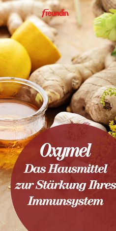The home remedy for strengthening your immune system - Oxymel Protein Rich Foods, Eat The Rainbow, Eat Fruit, Fermented Foods, Alternative Health, Health Articles, Nutritional Supplements, Home Remedies, Natural Health