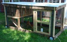 Starting Here.: The New Chicken Tractor