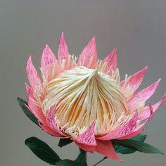 Crepe Paper Flowers, Felt Flowers, Diy Flowers, Fabric Flowers, Origami Paper, Diy Paper, Paper Art, Paper Crafts, Bloom Baby