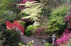 jardin-japonais-pont-décoratif-bois-coloré-rouge-végétation