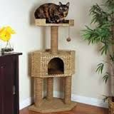 Image result for petco cat tower