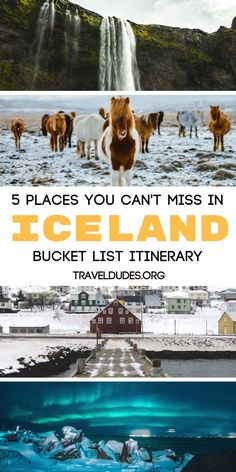 5 places you can't miss while in Iceland. Reykjavik is the country's capital city and features the B Iceland Travel Tips, Europe Travel Tips, Travel Goals, Travel Advice, Travel Info, Oh The Places You'll Go, Places To Visit, Landscape Photography, Travel Photography