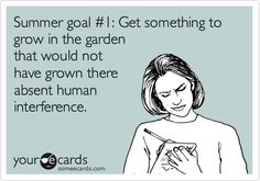 Summer goal #1: Get something to grow in the garden that would not have grown there absent human interference.