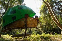 Wildlife conservation trekking tour to the heart of the protected area with overnight in cozy spherical baskets hanging from the trees – 'The Nests'.