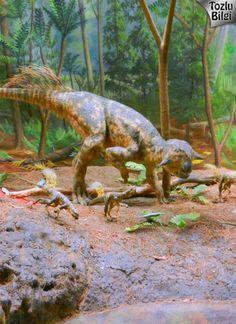 Sürpriz Dinozor Yumurtaları