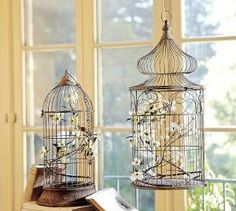 for some reason bird cages with pretty blossoms always looks so elegant to me.