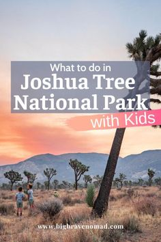 Joshua Tree National Park is perfect for families. This post has everything you need to know about visiting Joshua Tree National Park with Kids. It includes the best places to stay, when to visit Joshua Tree National Park, and what to do with kids in Joshua Tree National Park. If you are considering joshua tree as a destination for your next family vacation, look no further. #jtNP #travelwithkids #Joshuatreenationalpark Joshua Tree National Park, Us National Parks, Travel With Kids, Family Travel, Group Travel, Travel Usa, Travel Tips, California Travel Guide, Us Destinations