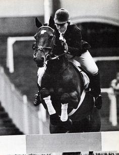 The little pony that could..Stroller (1950 – 1986) was the only pony to compete at the Olympics in Show Jumping. He was a bay gelding, Irish Sport Horse breed by a thoroughbred out of a Conemara pony, unknown breeder. He was only 145 cm (14.1 hh) high. Ridden and owned by Marion Mould (née Coakes).