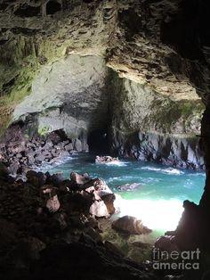 ✯ Sea Lion Caves - Beautiful Oregon