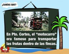 #segunmoncho #cortes 10