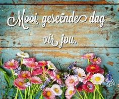 Good Morning Wishes, Good Morning Quotes, Lekker Dag, Evening Greetings, Goeie More, Afrikaans Quotes, Living Water, Special Quotes, Love Rose