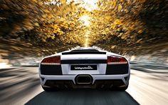 Descargar fondos de pantalla Lamborghini Murcielago, carretera, supercars, blanco, Murcielago, italiano coches, Lamborghini