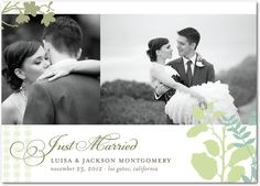 Soft Accents - Signature White Wedding Announcements - Jenny Romanski - Green Tea - Green : Front