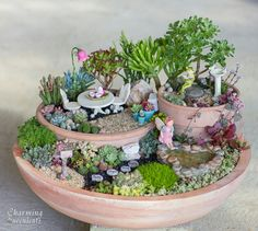 DIY succulent fairy garden Follow step by step of how to create this magical fairy garden using succulents.