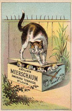 Vintage advertising card